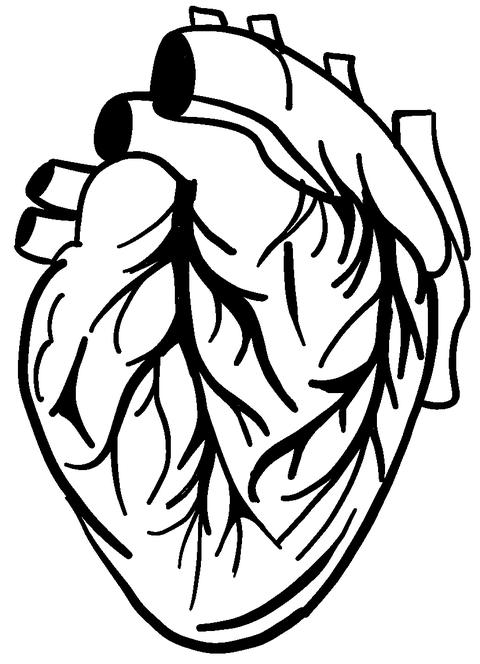 Large Detailed Heart Graphic Decal Image